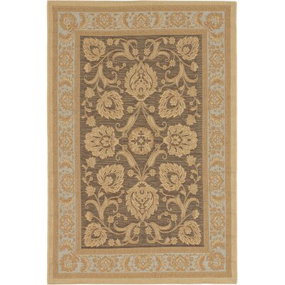 Versailles Antique Dark Brown Indoor/Outdoor Area Rug Rug Size: 49 x 73
