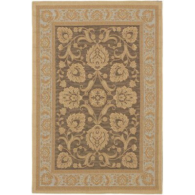 Versailles Antique Dark Brown Indoor/Outdoor Area Rug Rug Size: Rectangle 33 x 48