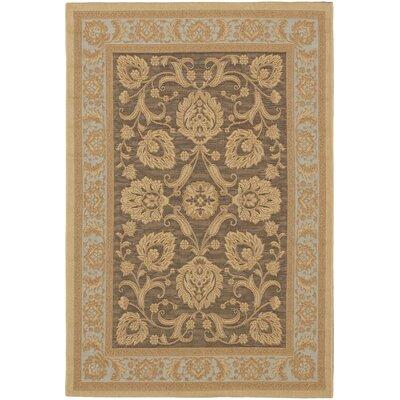 Versailles Antique Dark Brown Indoor/Outdoor Area Rug Rug Size: 33 x 48