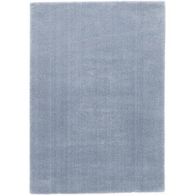 Light Blue Area Rug Rug Size: 8 x 10