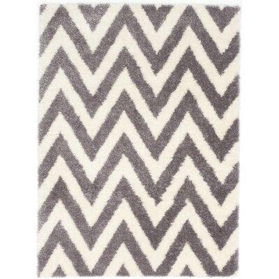 Cream/Gray Area Rug Rug Size: 53 x 73