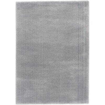 Paradis Gray Area Rug Rug Size: 8 x 10