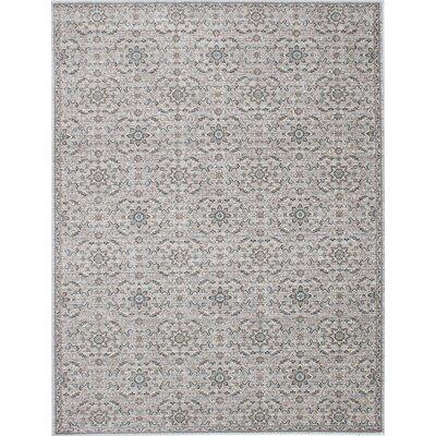 Paradis Gray Area Rug Rug Size: 82 x 1010