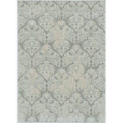 Bonis Well Gray Area Rug Rug Size: 311 x 53