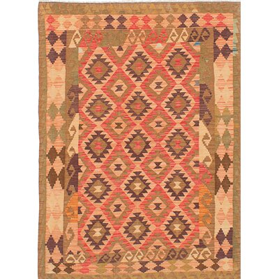 Anatolian Flat-Woven Brown/Red Area Rug
