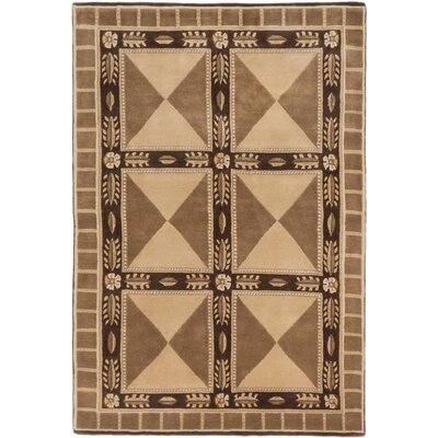 Aurora Hand-Knotted Beige/Dark Brown Area Rug