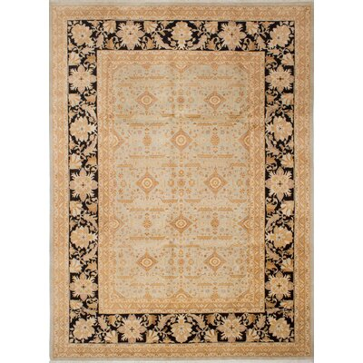 Pako Persian Hand-Knotted Black/Beige Area Rug