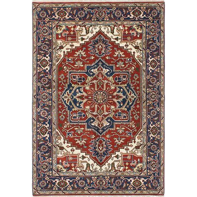 Hand-Knotted Navy Blue/Red Area Rug