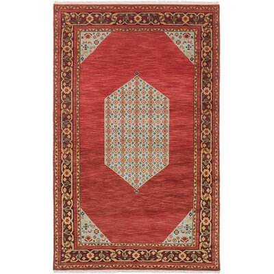 Peshawar Hand-Knotted Red/Gray Area Rug