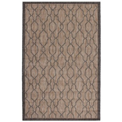 Illusion Black/Ivory Indoor/Outdoor Area Rug