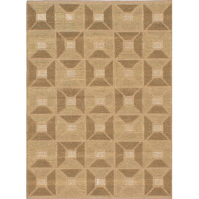 Impressions Braid Hand Woven Beige/Brown Area Rug