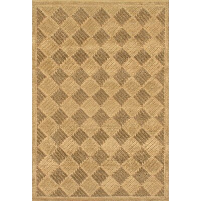 Impressions Braid Hand Woven Brown Area Rug
