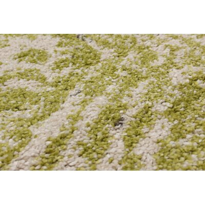 Manuel Shag Light Green Area Rug Rug Size: Rectangle 65 x 95
