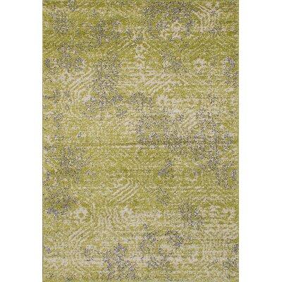 La Morocco Shag Light Green Area Rug Rug Size: 65 x 95
