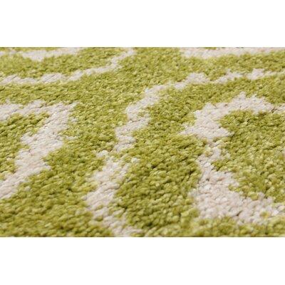 Manuel Shag Light Green/Beige Area Rug Rug SIze: 65 x 95