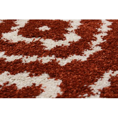 Manuel Shag Dark Copper Area Rug Rug Size: 65 x 95