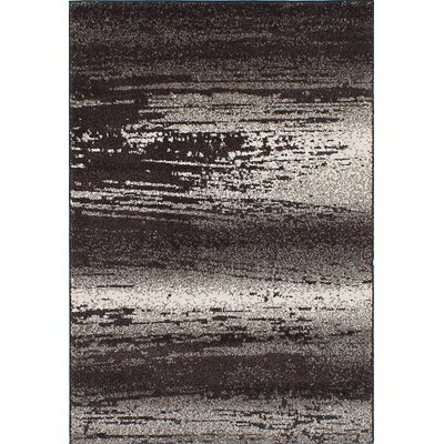 Wilfred Shag Dark Brown/Dark Gray Area Rug Rug Size: 52 x 75
