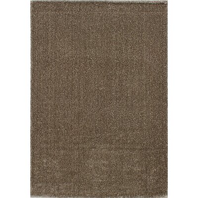 Millenium Shag Brown Area Rug Rug Size: 52 x 75