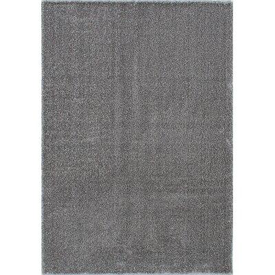 Millenium Shag Gray Area Rug Rug Size: 52 x 75