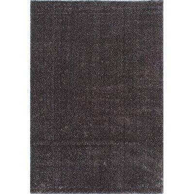 Millenium Shag Dark Gray Area Rug Rug Size: 65 x 95