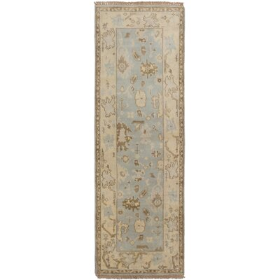 Li Traditional Hand-Knotted Light Blue Area Rug