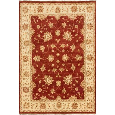 Ruella Hand-Knotted Dark Orange Area Rug