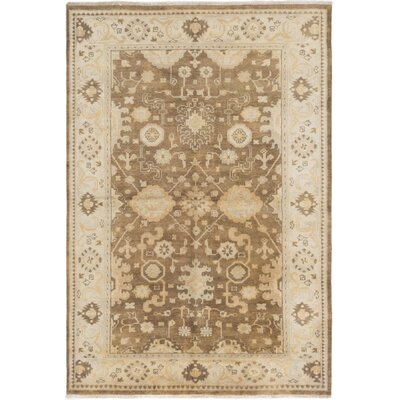 Li Traditional Hand-Knotted Brown Area Rug