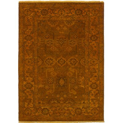 Cabrera Hand-Knotted Burnt Orange Area Rug