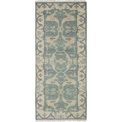 Li Traditional Hand-Knotted Turquoise Area Rug