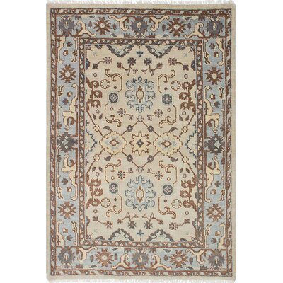 Li Hand-Knotted Baby Blue/Dark Cream Area Rug