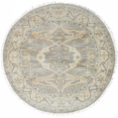Li Hand-Knotted Cream/Gray Area Rug