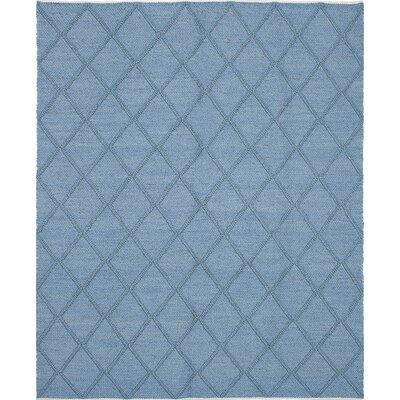 Maui Braided Handmade Sky Blue Area Rug Rug Size: 8 x 910