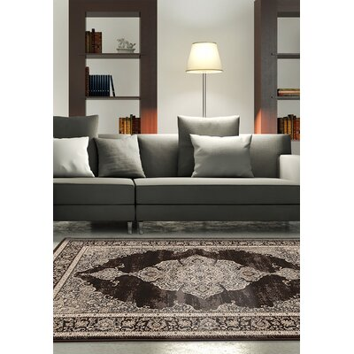 Kaixin Cream/Dark Brown Area Rug Rug Size: 53 x 77