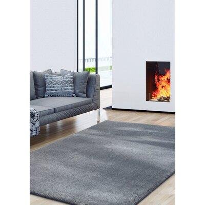 Alvera Shag Gray Area Rug Rug Size: Rectangle 51 x 7