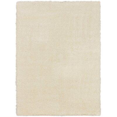 George Shag Cream Area Rug Rug Size: Rectangle 53 x 73