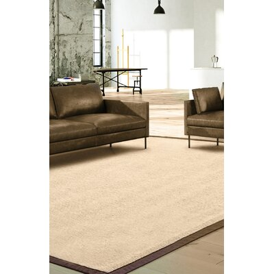 Titus Cream Area Rug Rug Size: Rectangle 8 x 10