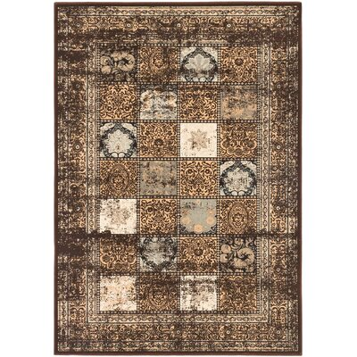 Jaycob Dark Brown Area Rug Rug Size: 53 x 77