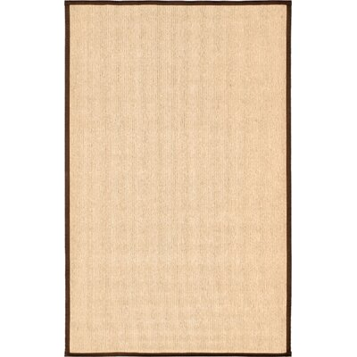 Titus Cream Area Rug Rug Size: Rectangle 5 x 8