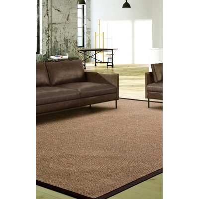 Titus Brown Area Rug Rug Size: Rectangle 5 x 8