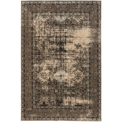 Vincenzo Chocolate Area Rug