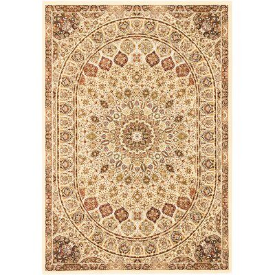 Casen Brown Area Rug Rug Size: 5'3