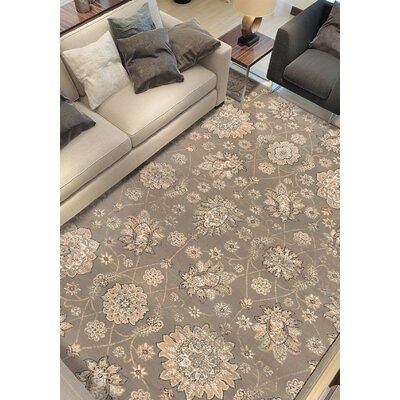 Ismenia Dark Khaki/Gray Area Rug Rug Size: 53 x 77