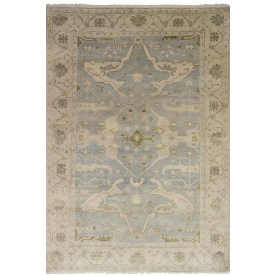 Bason Traditional Hand-Knotted Wool Gray Area Rug