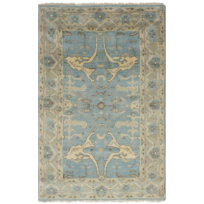 Biddlesden Hand-Knotted Wool Sky Blue Area Rug