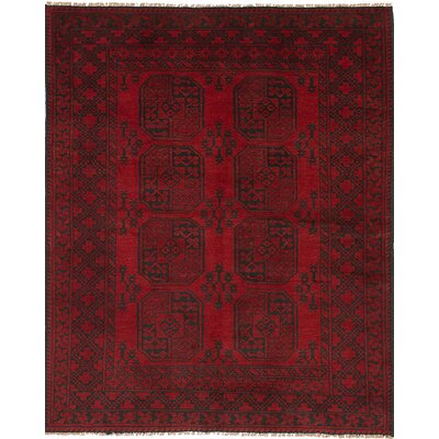 Bridges Southwestern Hand Knotted Rectangle Wool Red Area Rug