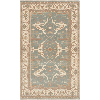 Li Hand Knotted Rectangle Wool Light Turquoise Area Rug