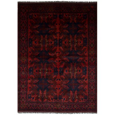 Rosales Traditional Hand Knotted Rectangular Wool Red Indoor Area Rug
