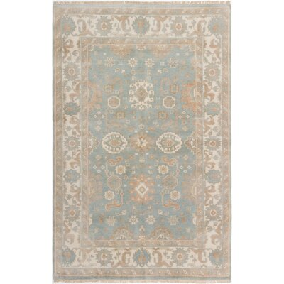 Li Hand Knotted Rectangle Wool Light Blue Area Rug