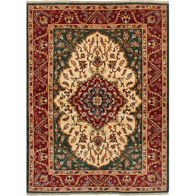 Castellanos Hand Knotted Rectangle Wool Ivory/Red Area Rug