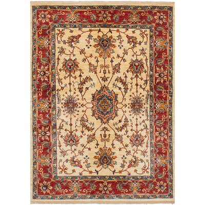 Castellanos Hand Knotted Wool Ivory/Red Area Rug